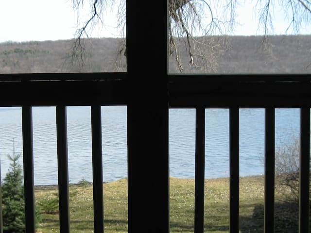 Conesus Lake private room & bath