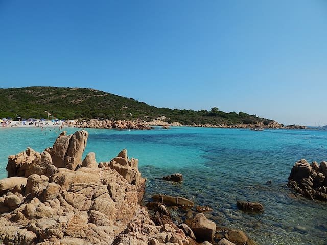 dive in the blue seas of Sardinia!