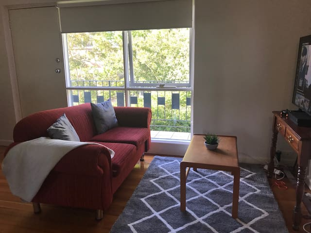 Ormond Apartment - Never priced over $65 per night