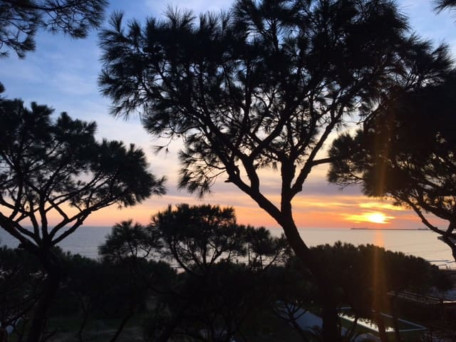 Front line beach accommodation - Mazagón - Chalet