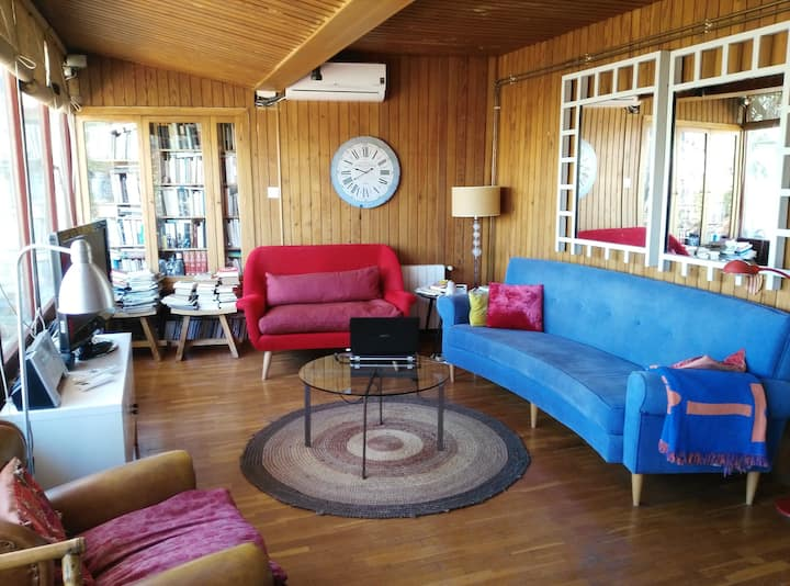 Wonderful attic with terrace