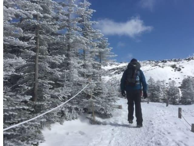 Snowshoe trecking