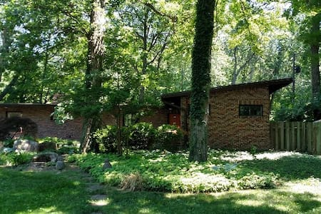 Mid Century Dream in Okemos - Meridian charter Township - House