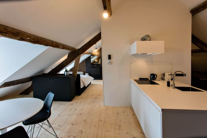 "New Loft (60m2) directly on the ""Maas"""