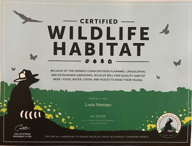 Enjoy native California wildlife in our garden. You will see dozens of birds, butterflies, some small mammals and lots of friendly bugs.