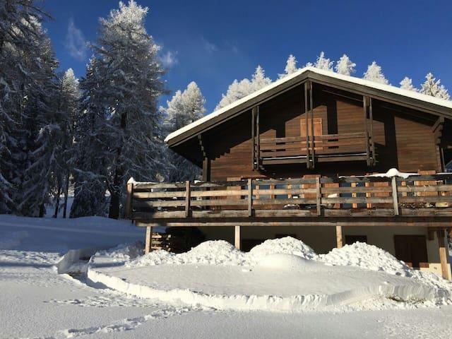 Cozy Swiss Chalet - Bellwald