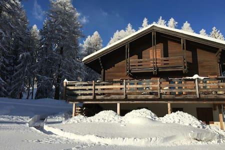 Cozy Swiss Chalet - Bellwald - Alpehytte