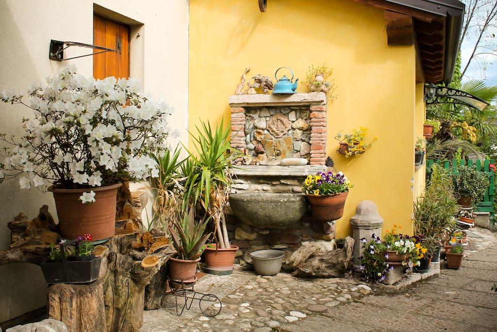 Entrance - garden
