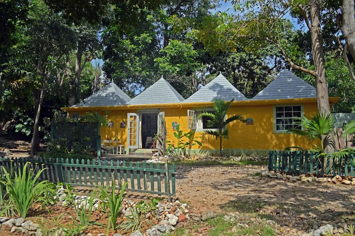 Spacious Studio Cottage w/ Ocean Access, Jamaica