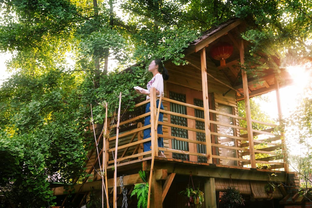 院子里的小树屋,可以入住一人。