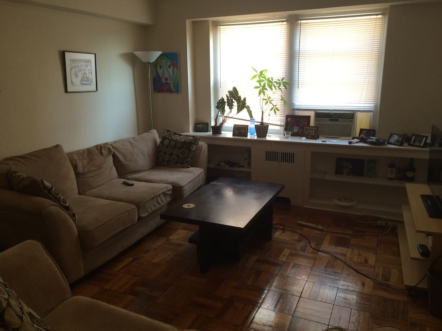 one bedroom apartment in woodley park apartments for rent in