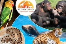 Attiko Zoological Park