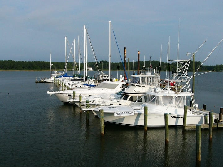 The Marina Oasis in Taylors Island