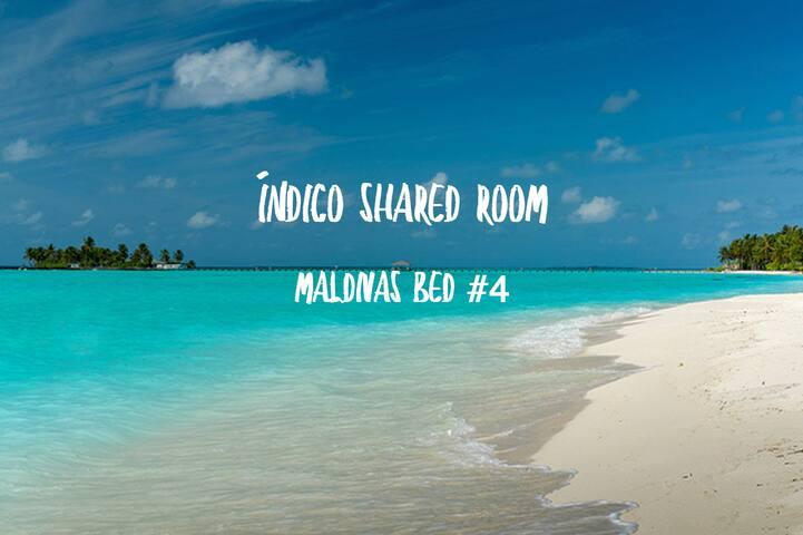 Índico Shared Room -  Maldivas bed #4