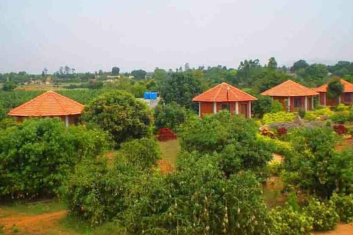 Farmstay on  Bangalore - Tirupathi highway (NH4)