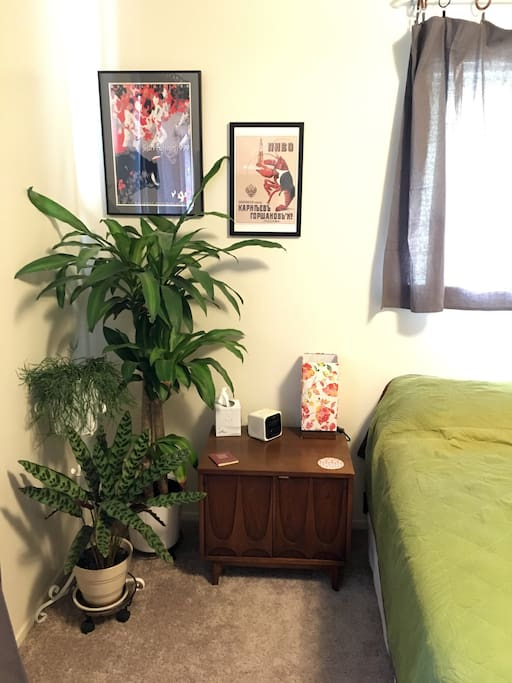 Real plants and extra linens.