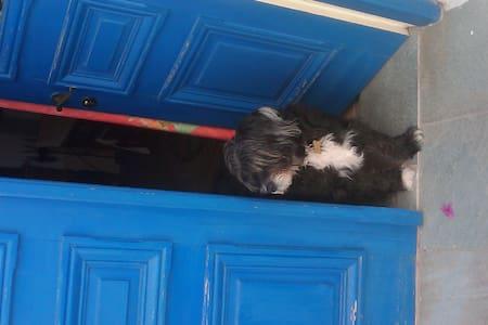 Σπιτι στην Μαρπησσα - Marpissa - Apartament