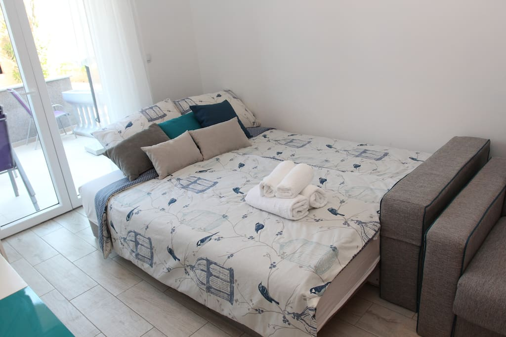 Spacious studio apartment with comfortable  pull -out sofa dimensions 160×200 cm