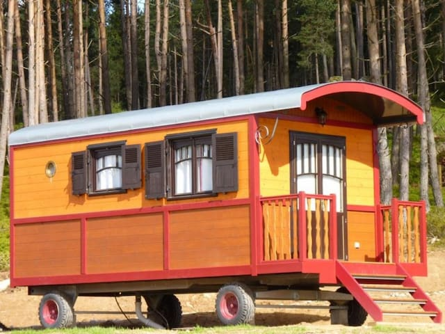 Wooden caravan of 17m2 for 4 people.