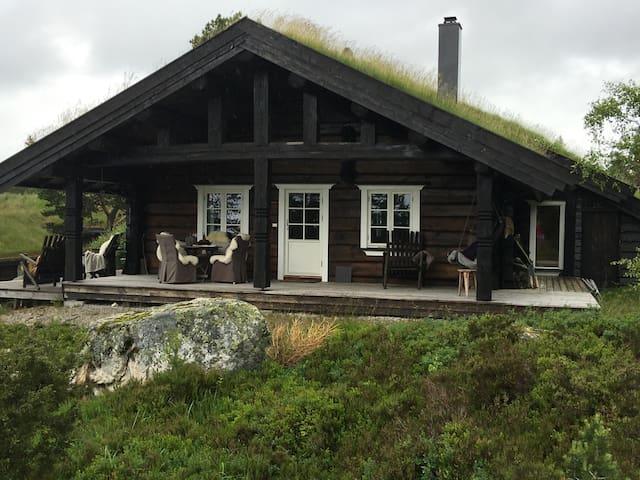 Laftet  fjellhytte med fiske og bademuligheter - Åmli kommune - Cabin