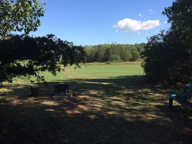 The view from the deck. Fields and woods make up the 40 acres to explore.