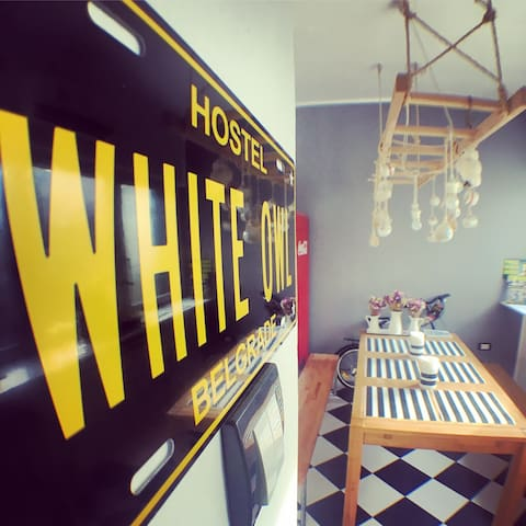 White Owl Hostel -Cloud- dorm