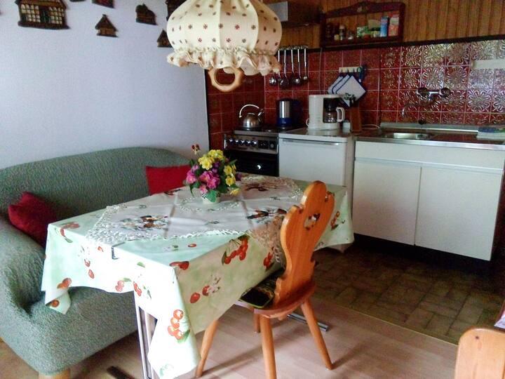 Haus Sielblick, (Hooksiel), Ferienwohnung 1, 35 qm, 1 Schlafzimmer, Wohn-/Schlafzimmer, überdachte Terrasse, max. 3 Personen