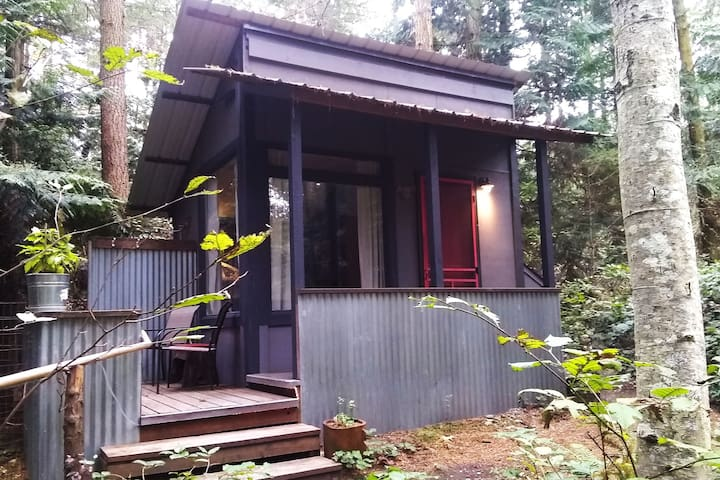Cozy Cabin in Olympic Forest, Private, Warm, Quiet