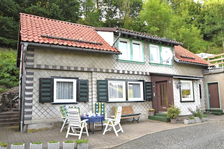 Large holiday home near Braunlage with wood stove and roof terrace