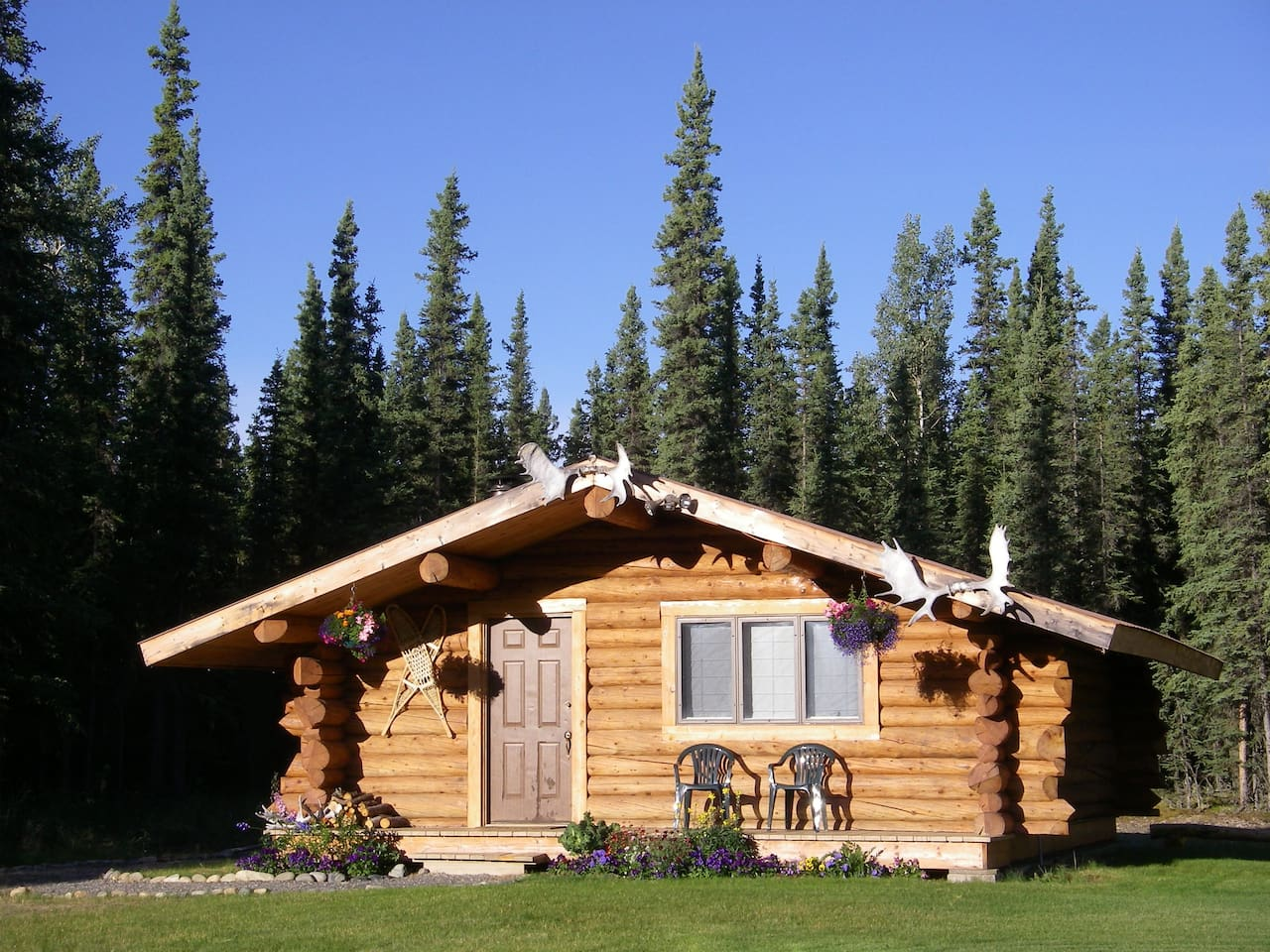 Cloudberry Cabin:  Your home for a quiet, peaceful stay only 3 miles from town in Tok, Alaska