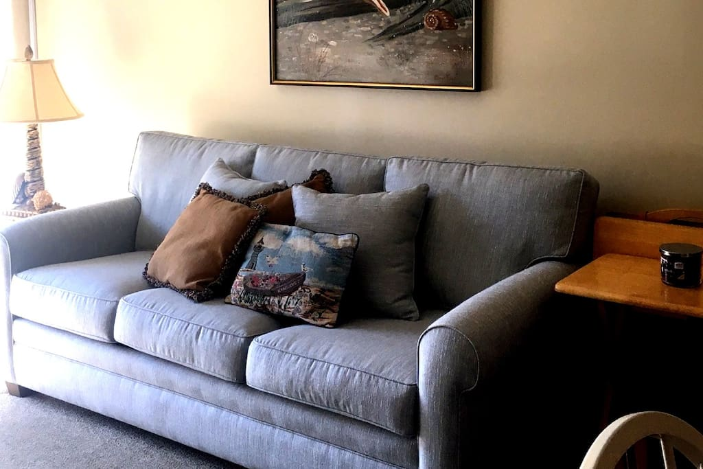 Family room queen sofa.