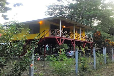 Casa Ara near the Caribbean beaches in Cahuita