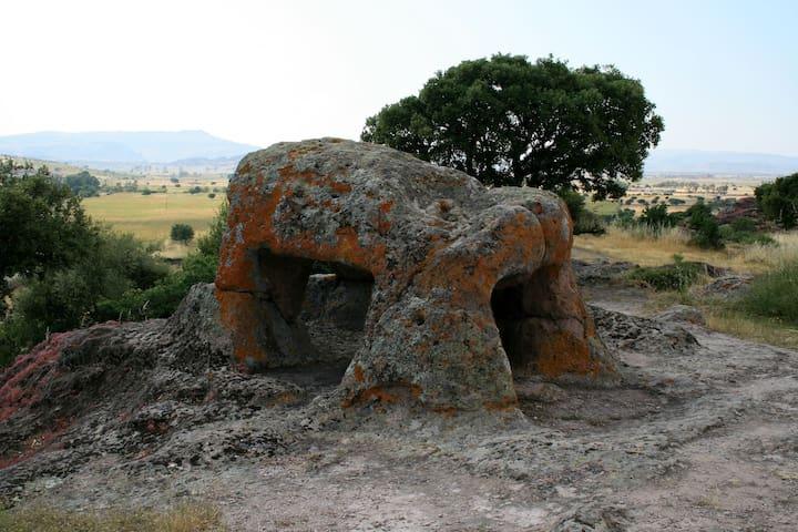 Domus de Janas - Bonorva - Departamento