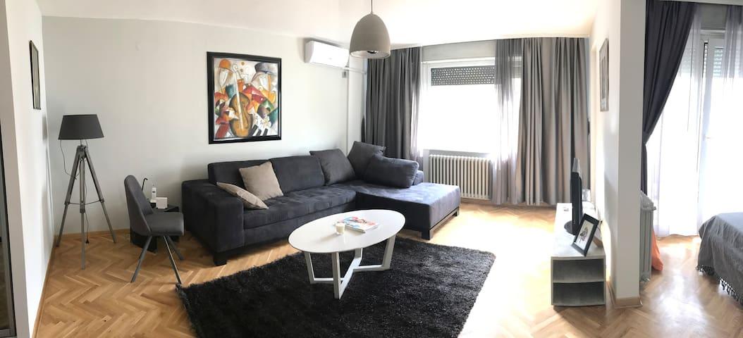 Apartment in Belgrade (CENTER, Vracar)