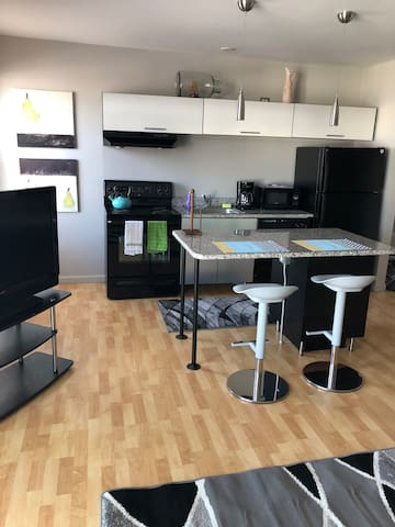 Furnished 1-Bed Downtown Royal Oak!! 310-310