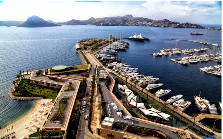 Luxurious marina with world famous restaurants and shops