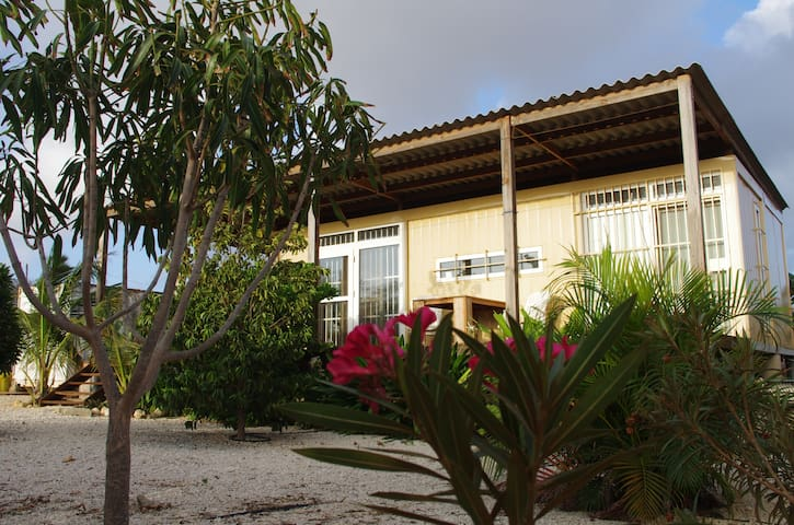 Back to Basic Bonaire - Kralendijk - Appartement