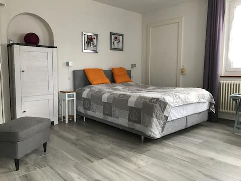 Pretty comfortable one-room apartment with parking