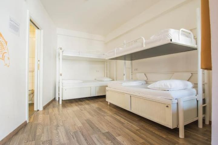 Bed in 4-Bed Mixed Dorm with Ensuite Bathroom
