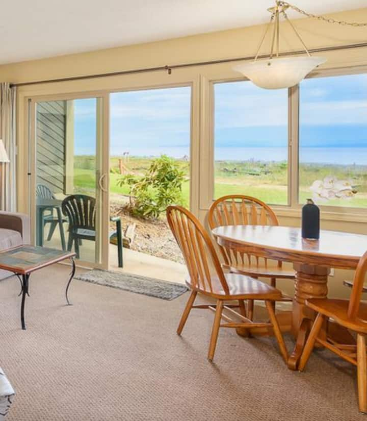 Walkout ocean front condo with spectacular views