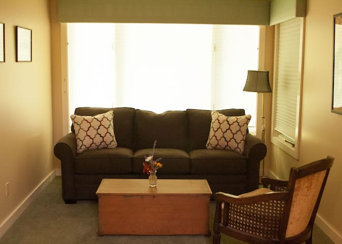 Guest Suite #1 Sleeper Sofa
