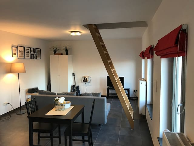 Bel appartement duplex à Mons (centre ville)