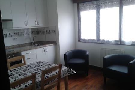 APARTAMENTO CENTRICO CON TERRAZA - 奧維耶多 - 公寓