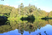 This is the second loch on the Estate, surrounded by lovely trees and rhododendrons.