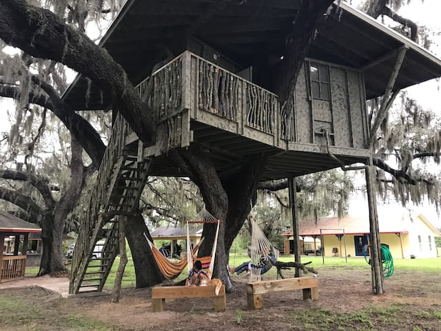 Disney relaxing Tree House