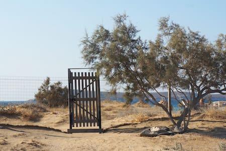 Studios on the beach - Chrisi Akti - 宾馆