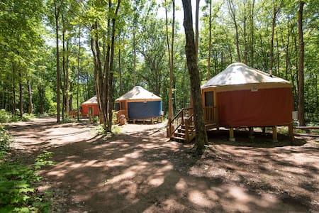 Turtle Yurts - Yurt 2