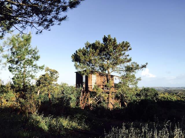 Dreamy tree hut@Into the Wild Algarve Eco Campsite