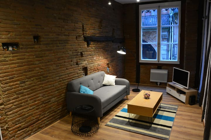 Plein cœur Toulousain : Grand appartement atypique - Toulouse - Wohnung