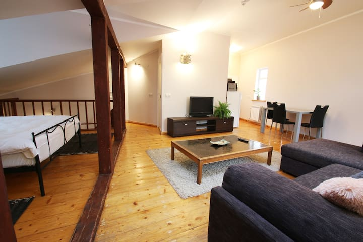Sunny & Spacious Penthouse suite in the Old Town